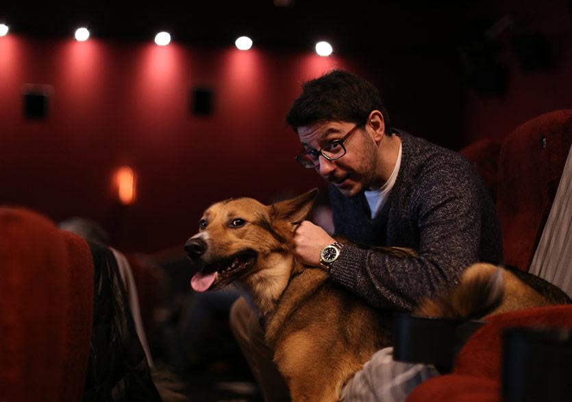 Edinburgh'da Seyirciler Köpekleriyle Isle of Dogs Filmini İzledi