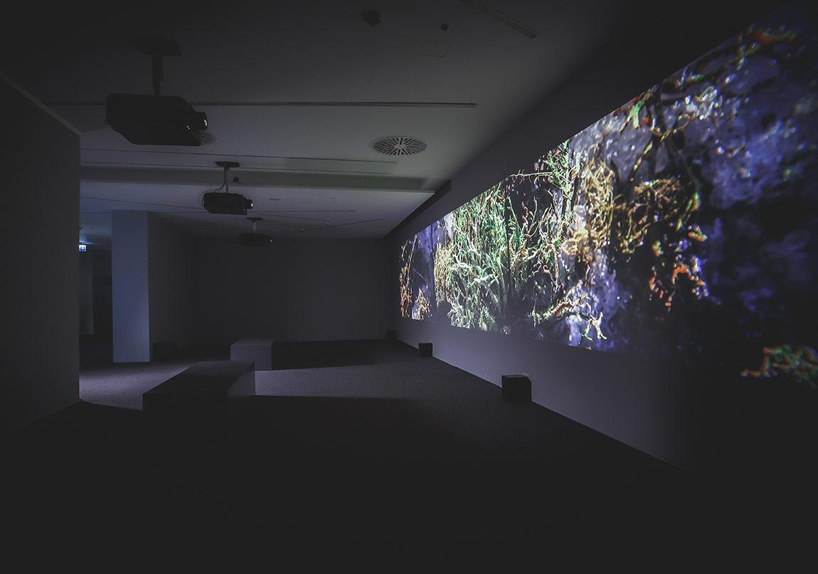 Kurt Hentschl‰ger, ÷lÁ¸2014, Sesli ¸üç kanallı video projeksiyon,