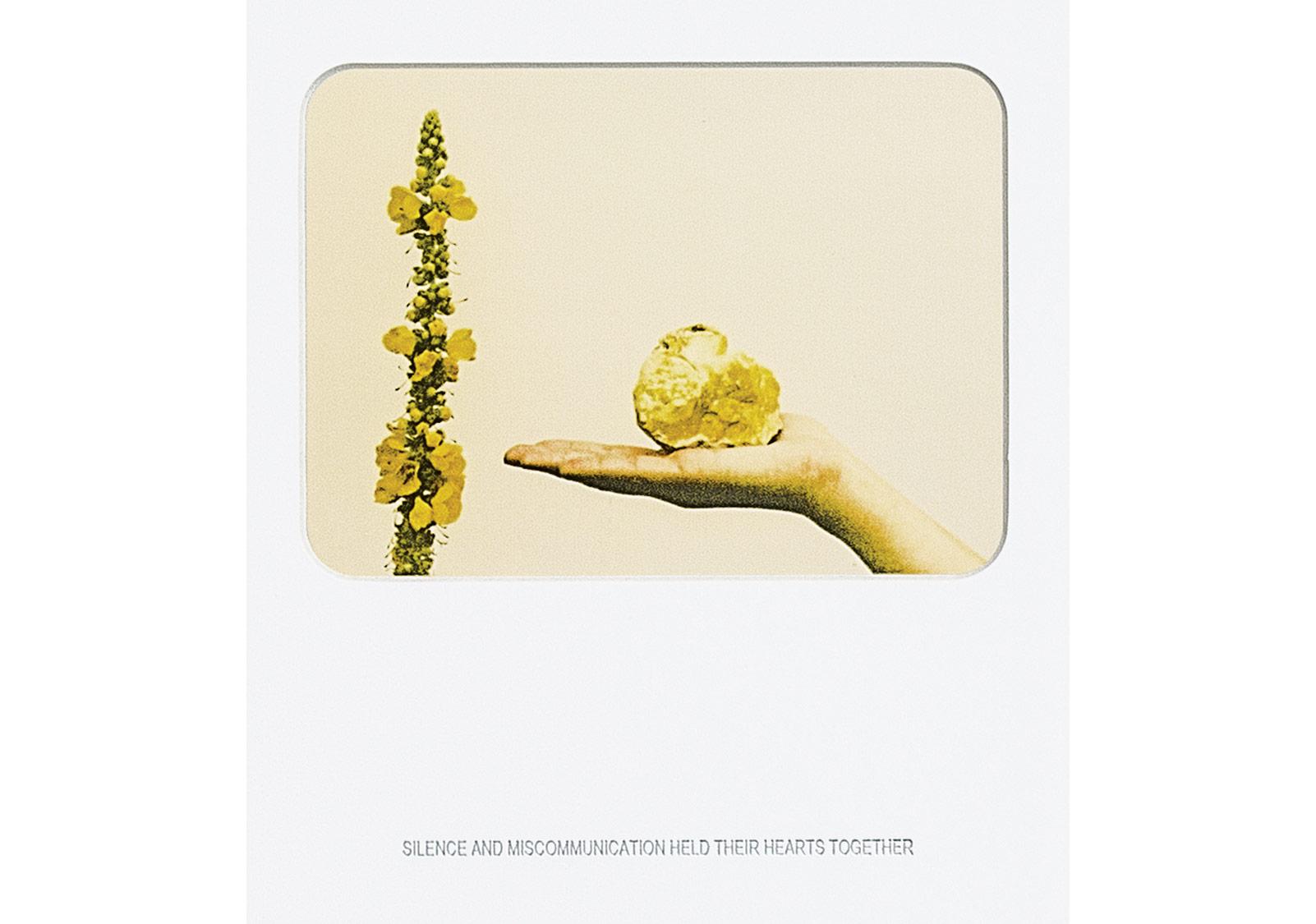 Basim Magdy, Sessizlik ve iletişimsizlikti kalplerini dağılmaktan koruyan (2012), Baskı ve metin (1. edisyon) 45x52 cm.