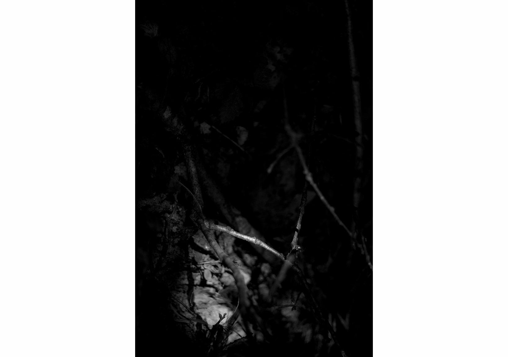 Aslı Narin, Rüzgarı Düşün/Think of the Wind(4), 2015, Diasec baskı/print, 40x27cm