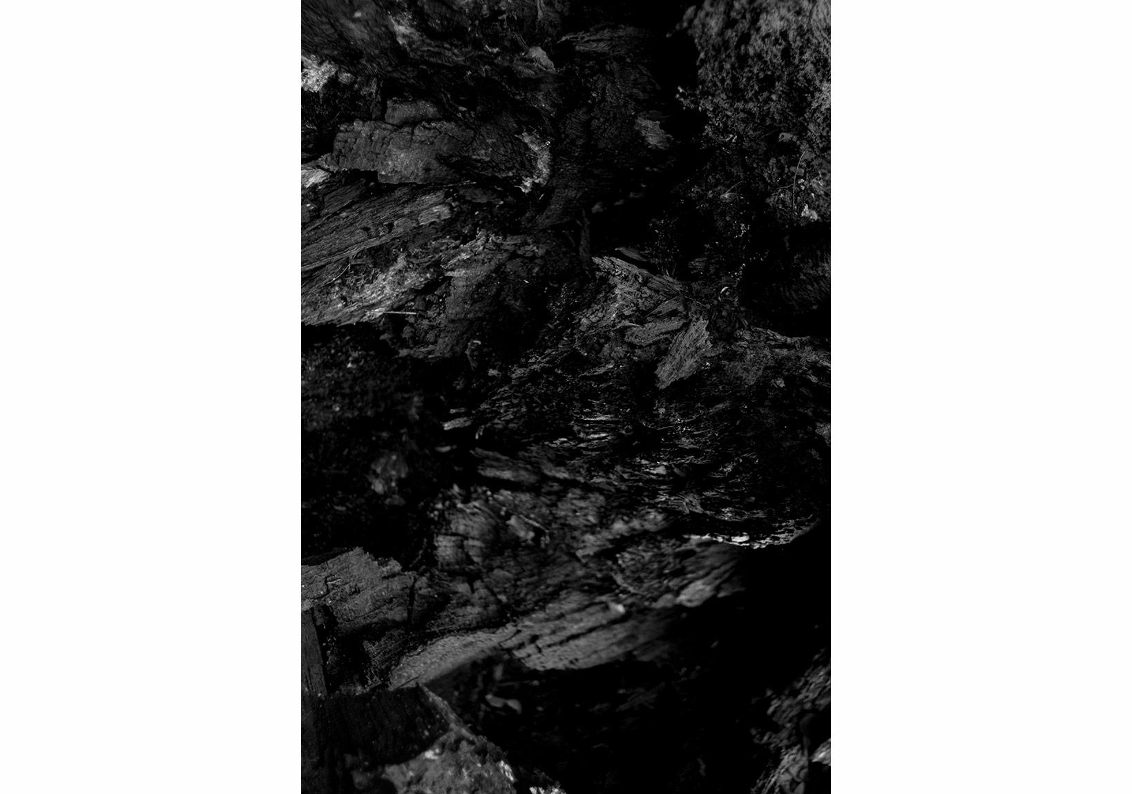 Aslı Narin, Rüzgarı Düşün/Think of the Wind(9), 2015, Diasec baskı/print, 40x27cm