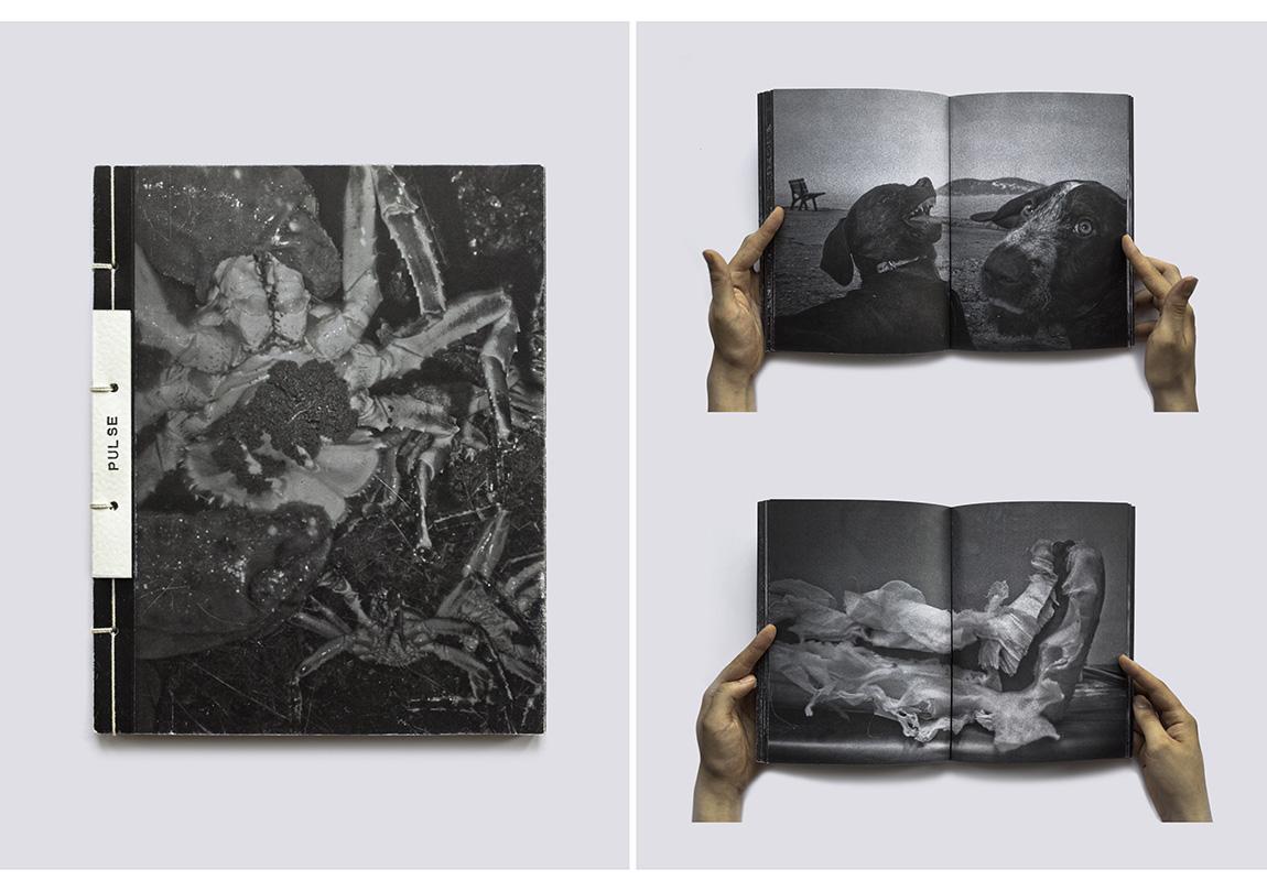"Ata Kam, ""Nabiz"" (2010-2014), El yapimi kitap maketi, 30x23cm, 2014"