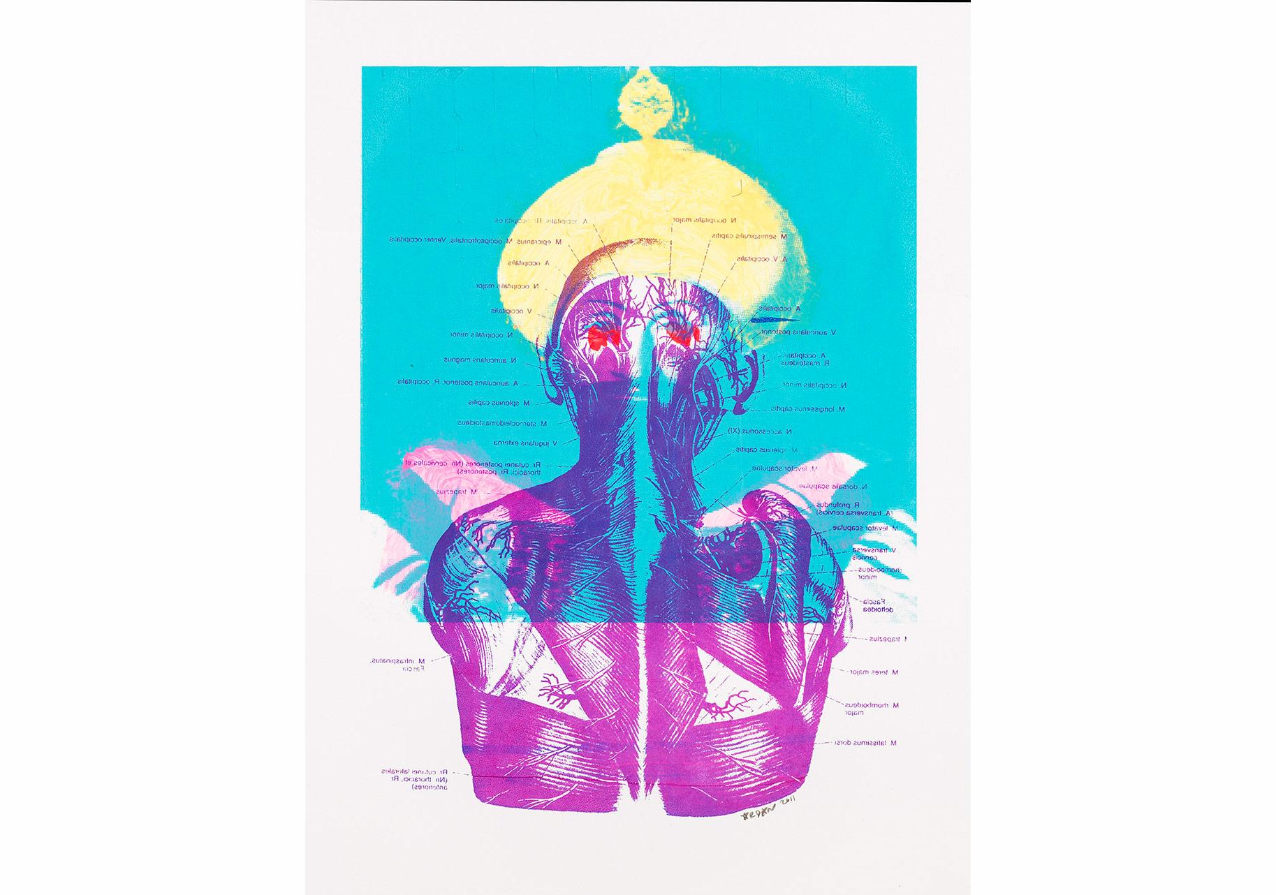 Ardan Özmenoğlu, Osmanlı Anatomisi 2, Kağıt üzerine karışık teknik, 46 x 54 cm, 2011