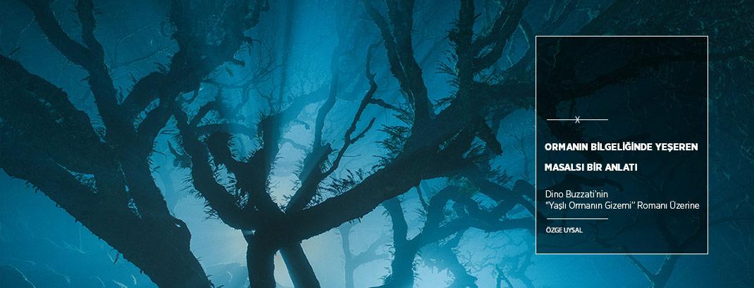 Ormanın Bilgeliğinde Yeşeren Masalsı Bir Anlatı