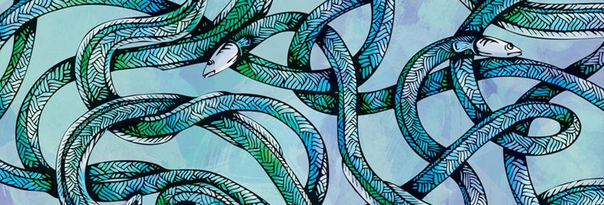 Yılanbalığı - Alfa