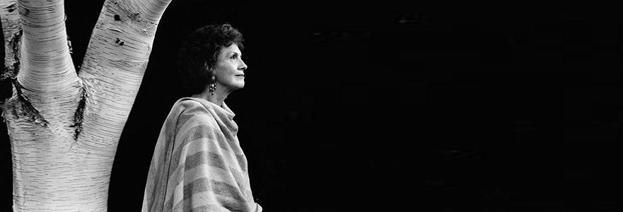 Taşra Yollarını Nobel'e Çıkaran Bir Yazar: Alice Munro