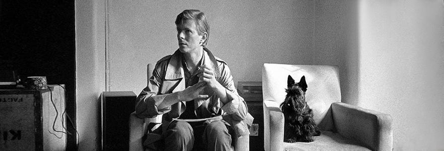 Sanat Eserinin Ta Kendisi: David Bowie