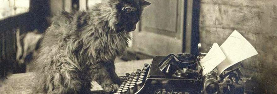 Kedili Edebiyat: Yazarlar Ve Kedileri